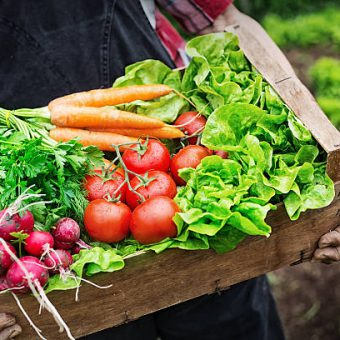 De perfecte groenteleverancier horeca